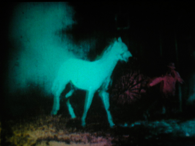 BERLIN-HORSE-FEATURED-ARTIC